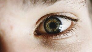 piwne oko